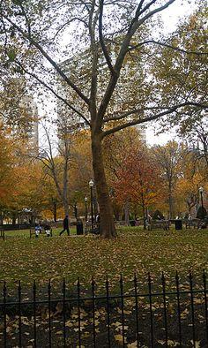 fall in rittenhouse square philadelphia