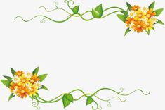 Todos OS tipos de Belas Flores., Todos OS Tipos De, Linda Flor, MolduraImagem PNG