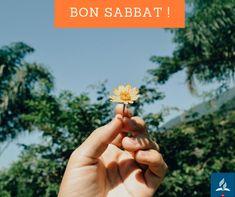 Bon Sabbat, Sabbats, Cancer, God Is Love, Bonjour