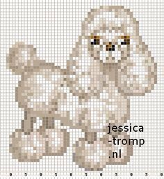 ZORRO1 Tiny Cross Stitch, Beaded Cross Stitch, Cross Stitch Animals, Counted Cross Stitch Patterns, Cross Stitch Designs, Poodle, Peler Beads, Dog Pattern, Loom Beading