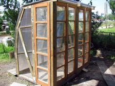 Greenhouse Design/Build | Southern Live Oak