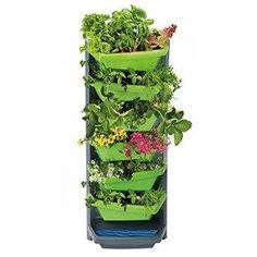 Aufbauelemente von Vertical Garden Vertical Garden Diy, Vegetables, Plants, News, Planting, Vegetable Recipes, Plant, Veggies