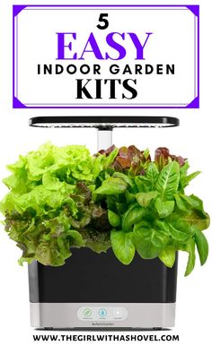 Use one of these top 5 indoor herb garden kits to grow amazing herbs with just the press of a button! Easy set-and-forget systems to grow all your favorite culinary herbs!