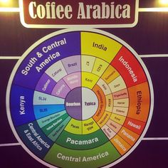 #coffee #arabica #infographic