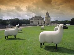 Chateau de Chenonceau, Loire valley, France, With plenty of sheep sculptures World Of Warriors, Loire Valley, Shed Homes, Graffiti Wall, France, Garden Spaces, Yard Art, Altered Art, Sheep