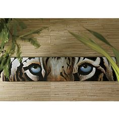 http://www.ginnys.com/Home-Decor/Wall-Decor/Tiger-Eyes-Canvas-Print.pro?fpi=7890=ZD