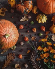 Imagen de autumn, pumpkin, and fall