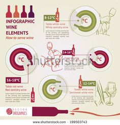 wine tasting. how to serve wine. infographic