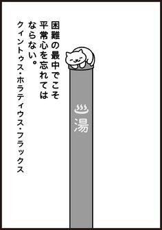 KinNeko2015110603