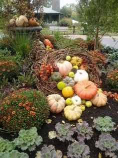 Inspiring Front Yard Landscaping For Fall Season - Front yard landscaping isn't frequently viewed as a territory for engaging or for sitting and getting a charge out of the sun. The front yard is usual. Fall Containers, Succulent Containers, Container Plants, Container Flowers, Container Gardening, Autumn Display, Fall Displays, Fall Planters, Garden Planters