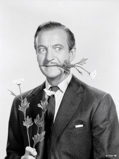 David Niven, suave, sophisticated, debonair, and oh so funny!