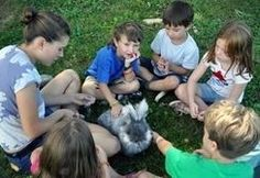 Animals, Art and the Imagination Camp Amherst, Massachusetts  #Kids #Events