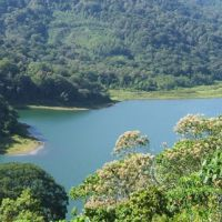 Bali Jungle Trekking will take you on great hikes through the jungles, up the mountains and along the lakes. A must for nature lovers and hikers #thingstodoinbali