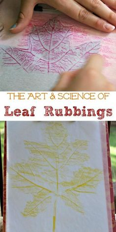 The BEST Fall craft for Kids! Explore leaf rubbings and look at the science of leaves!