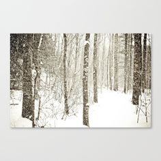 Wintry Mix Stretched Canvas by Olivia Joy StClaire | Society6