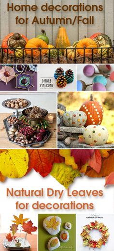 DIY: Natural Fall Decorations | ecogreenlove 🍁 We have the fallen leaves, the…