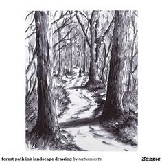 Shop forest path ink landscape drawing kitchen towel created by naturalarts. Forest Sketch, Forest Drawing, Realistic Drawings, Art Drawings, Rock Path, Girl Face Painting, Forest Tattoos, Tree Sketches, Traditional Artwork