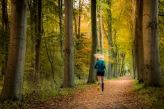 Jogging in the Autumn woods