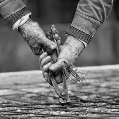 Working Hands by shljivo (Flickr)