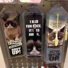 Grumpy bookmarks Grump Cat, Tarter Sauce, Angry Cat, Cat 2, Animal Memes, Cat Memes, Cat Love, Spirit Animal, Bookmarks