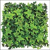 Complete a living wall or a hedge to evoke Old English charm with the help of the Outdoor Rated Artificial English Ivy Square Mat. This high quality artificial mat has an interlocking design that makes it easy to connect the by square with Artificial Green Wall, Artificial Hedges, Artificial Plants And Trees, Artificial Boxwood, Outdoor Landscaping, Outdoor Plants, Outdoor Decor, English Ivy Plant, Ivy Plant Indoor