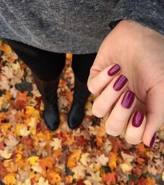 So much fall goodness 💅🏻🍂 @zoyanailpolish