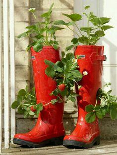 #7 Delightful Decorations #thevioletvixen  #summersoiree