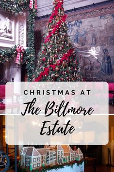 Celebrating a Biltmore Christmas- with hundreds of trees, twinkling lights, live music and amazing food who wouldn't want to celebrate a Biltmore Christmas? Usa Places To Visit, Visit Usa, Biltmore Christmas, Christmas Past, Twinkle Lights, Twinkle Twinkle, Best Winter Destinations, Biltmore Estate, Winter Travel