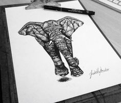 Pen Drawings by Isabella Mattiolo Marchese