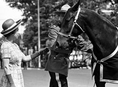 Queen Elizabeth II accepts a gift of one of the Royal Canadian Mounted Police horses during a visit to the Royal Canadian Mounted Police Training Depot. Regina, Saskatchewan. July 4, 1973.