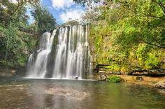 Discover The Wildlife Of Palo Verde National Park Costa Rica - http://villathoga.com/palo-verde-national-park-tour/
