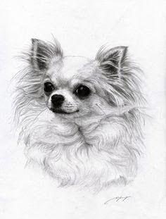 Pin By Lagatha Chapman On Painting Dog Art Chihuahua Drawing Chihuahua Art