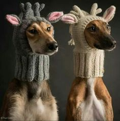 Terrie! Hannah and Ruby need these:)
