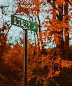 O c t o b e r Fall Pictures, Fall Photos, October Pictures, Autumn Cozy, Autumn Fall, Autumn Witch, Winter, Autumn Aesthetic, Fall Wallpaper