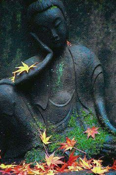 Buddha resting with Autumn leaves