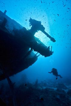 Definitely have to do a shipwreck dive in my lifetime