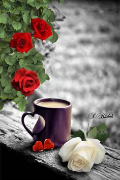 trendy birthday wishes quotes messages good morning Good Morning Coffee, Good Morning Greetings, Good Morning Good Night, Coffee Break, Birthday Wishes Best Friend, Birthday Message For Friend, Birthday Wishes Messages, Coffee Heart, I Love Coffee