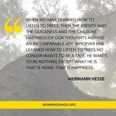 """Maria Popova on Instagram: """"Hermann Hesse was born on this day in 1877. Link in bio to hear @nataschaandsons and her lovely English voice (which was also the voice of…"""" He Wants, Thoughts, Learning, Hermann Hesse, Trees, English, Sayings, Link, Happy"""