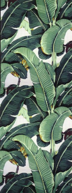 Banana leaf prints are having a comeback of their own. If you're up for tropical, you can't beat the iconic Martinique wallpaper made famous by the Beverly Hills Hotel. Palm Wallpaper, Tropical Wallpaper, Original Wallpaper, Classic Wallpaper, Large Print Wallpaper, 1950s Wallpaper, Wallpaper Plants, Wallpaper Samsung, Jungles