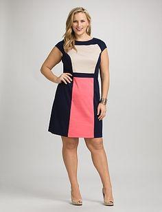 Plus Size Colorblock Center Panel Dress | Dressbarn