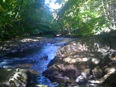 Cotton Hollow - Glastonbury, CT. The perfect swimming hole instead of the beach.
