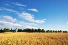 Östergötland när det är som vackrast!  #sädesfält #ilovesweden #bestofscandinavia #lifeisbeautiful #linköping #linköpinglive #himmel #blueskies #heaven #landskap #landscapelovers #landscape #igsweden #igscandinavia #scandinavia #meralink #lkpg #jonas_fotograf #ig_great_pics #ig_masterpiece #ig_captures #igdaily #ig_europe #love