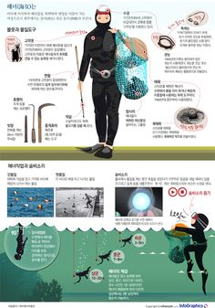 "infographics / design / ocean / sea / JEJU / korea / first / history /  ""이어도 사나, 어이야~"" '제주해녀'의 모든 것"