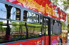 Wine Tour of Constantia Valley Gallery Sightseeing Bus, Cape Town, Tours, Wine, Gallery, Image, Beautiful, Roof Rack