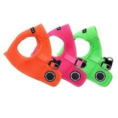 Fun bright basic mesh dog harness.