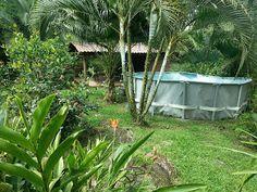 MPaniagua bienes raices: 0278001 Finca, Cubujuqui, Guápiles, Limón, Costa R...