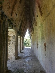 L'intérieur des édifices de Palenque est juste splendide! A découvrir au Mexique!