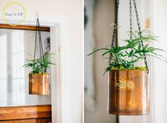 DIY industrial hanging plant. Find, fix and spruce up the house