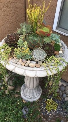 Mediterranean Garden Design 35 simple and small front yard landscaping ideas 10 – small front yard ideas Plants, Mediterranean Garden Design, Succulent Garden Diy, Backyard Landscaping, Garden Containers, Succulents, Small Front Yard Landscaping, Outdoor Gardens, Amazing Gardens