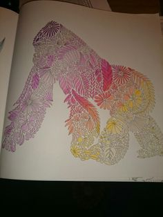 Millie marotta animal kingdom. Gorilla